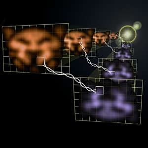 Physicists Produce Quantum-Entangled Images