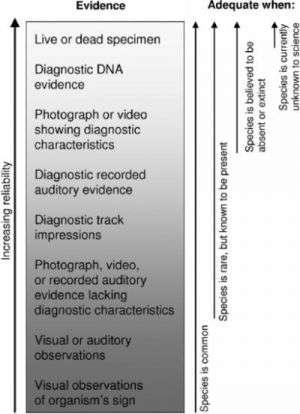 Sample Set of Evidentiary Standards