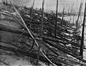 The Tunguska Event--100 Years Later