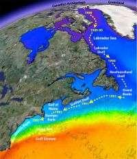 'Unprecedented' warming drives dramatic ecosystem shifts in North Atlantic