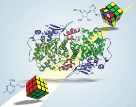 Vitamin B1 biosynthesis: Think Rubik's cube