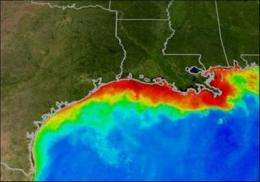 Biofuel production could undercut efforts to shrink Gulf 'Dead Zone'