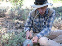 Plant communication: Sagebrush engage in self-recognition and warn of danger