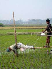Scientists pinpoint origin of dissolved arsenic in Bangladesh drinking water