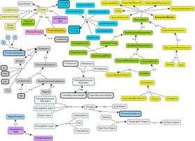 The eScience revolution: Creating semantic Web platforms for massive scientific collaboration