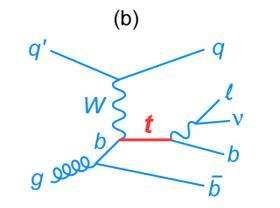 Fermilab collider experiments discover rare single top quark