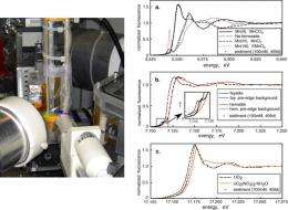 Researchers Identify Problems in the Uranium Bioremediation Avenue