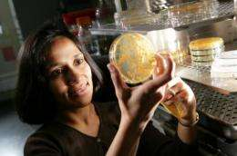 Researchers take aim at hard-to-treat fungal infections