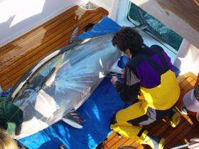 New technologies help scientists track fish species