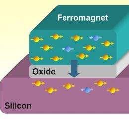 Spin polarization achieved in room temperature silicon