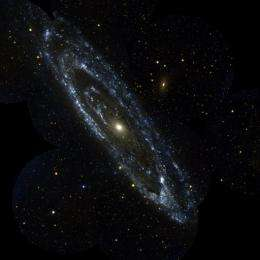 A large galaxy in Andromeda is seen in this file photo