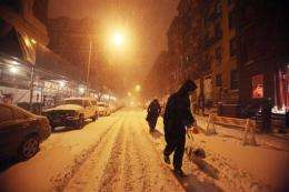 A man walks his dog in the snow in the East Village