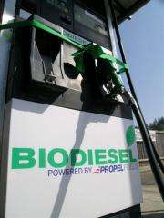 a new biodiesel fuel pump at The Grange in Issaquah, Washington