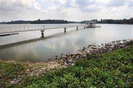 A view of one of the water catchment areas of the Upper Seletar reservoir in Singapore