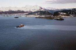 Bioavailable contaminants come from the Exxon Valdez oil catastrophe