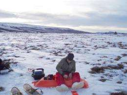 Biologists: Greening Arctic not likely to offset permafrost carbon release