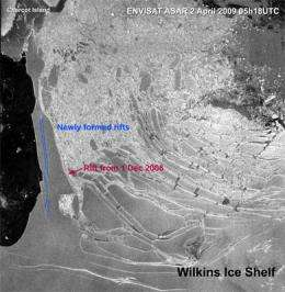 Collapse of the ice bridge supporting Wilkins Ice Shelf appears imminent