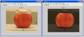 Computer Identifies Apple Appeal