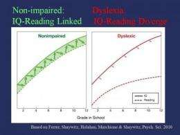 Dyslexia defined: New study 'uncouples' reading and IQ over time
