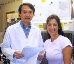 Earlier Flu Viruses Provided Some Immunity to Current H1N1 Influenza, Study Shows