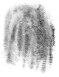 fingerprints.jpg