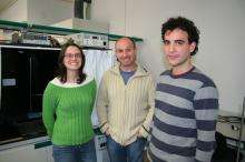 Scientist increase the efficiency of a type of solar cell by incorporating ionic salts