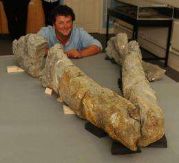 Giant Skull of Pliosaur 'Sea Monster' Unearthed in England