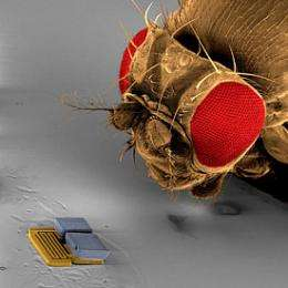 Is Your Microrobot Up for the (NIST) Challenge?