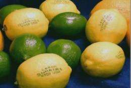 Laser etching safe alternative for labeling grapefruit