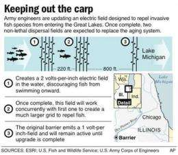 Lawmakers seek emergency steps to halt Asian carp (AP)