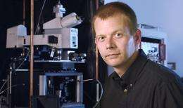 Light-absorbing nanowires may make better solar panels