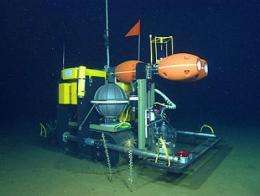 New robot travels across the seafloor to monitor the impact of climate change on deep-sea ecosystems
