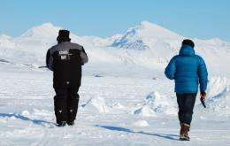 People with rifle and a flare gun chase a polar bear in the village of Ny-Aalesund
