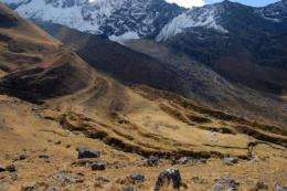 Peruvian glacial retreats linked to European events of Little Ice Age