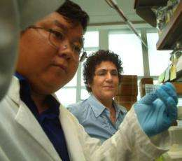 Protein handlers should be effective treatment target for cancer and Alzheimer's