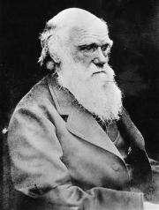 Rare Charles Darwin book found on toilet bookshelf (AP)