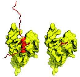 Toward new drugs that turn genes on and off