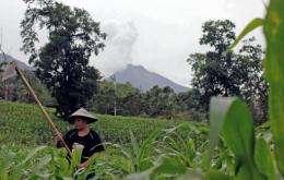 A farmer works in a field near the Mount Soputan on Indonesia's Sulawesi island
