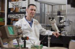 A flash of insight: Chemist uses lasers to see proteins at work
