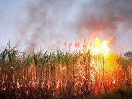 Air pollution results from sugarcane ethanol production