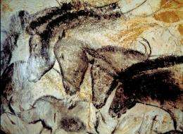 Ancient DNA provides new insights into cave paintings of horses
