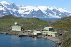 Antarctic flowering plants warm to climate change