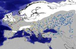 Archeologists investigate Ice Age hominins' adaptability to climate change