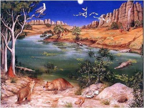 Giant prehistoric marsupial found in Northern Australia