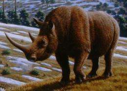 Humans and climate contributed to extinctions of large ice-age mammals, study finds