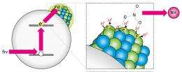 Nanotechnology points the way to greener pastures