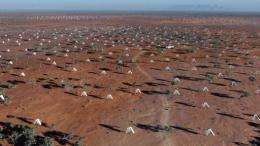 The Square Kilometre Array will eventually link thousands of radio dishes to make a massive antenna