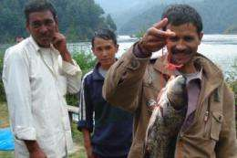 Fish cage culture catches on in Nepal