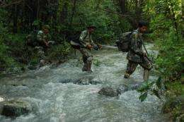 Candid video clips from Thailand show anti-poaching efforts saving wildlife