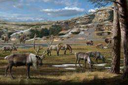 Unraveling the causes of the Ice Age megafauna extinctions